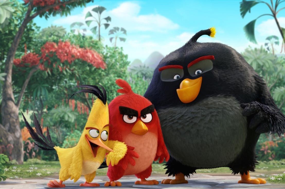 The Angry Birds Take Flight On C Spire Fiber TV Video OnDemand