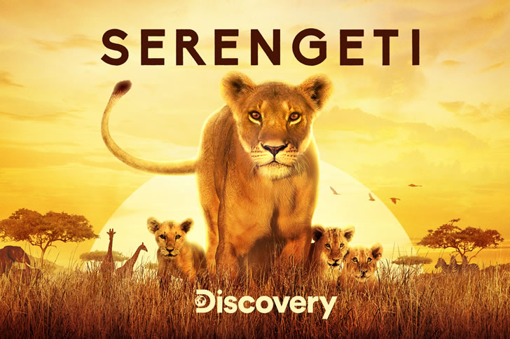 Discovery's Serengeti Takes C Spire TV Viewers On The Ultimate Safari
