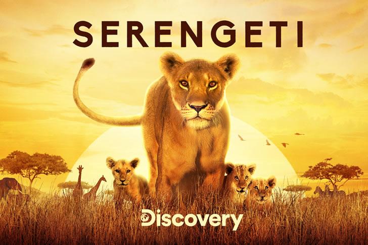 Discovery's Serengeti Takes C Spire TV Viewers On The UltimateSafari